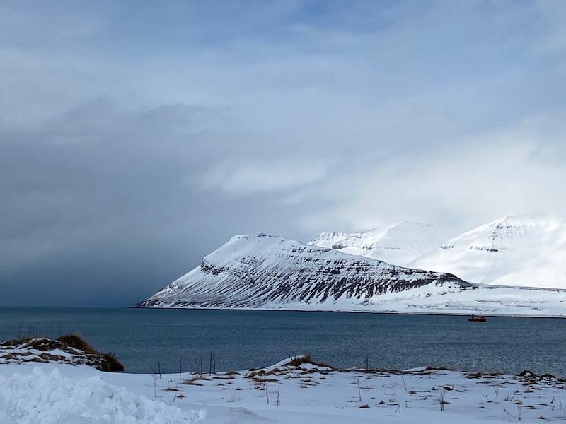 Arnhildur Lilý Karlsdóttir, fæðuöryggi, pistill, landsbyggðin, matrækt, Vestfirðir, Þingeyri, úr vör, vefrit