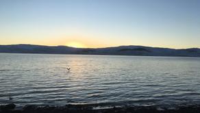 Lífið á landinu bláa