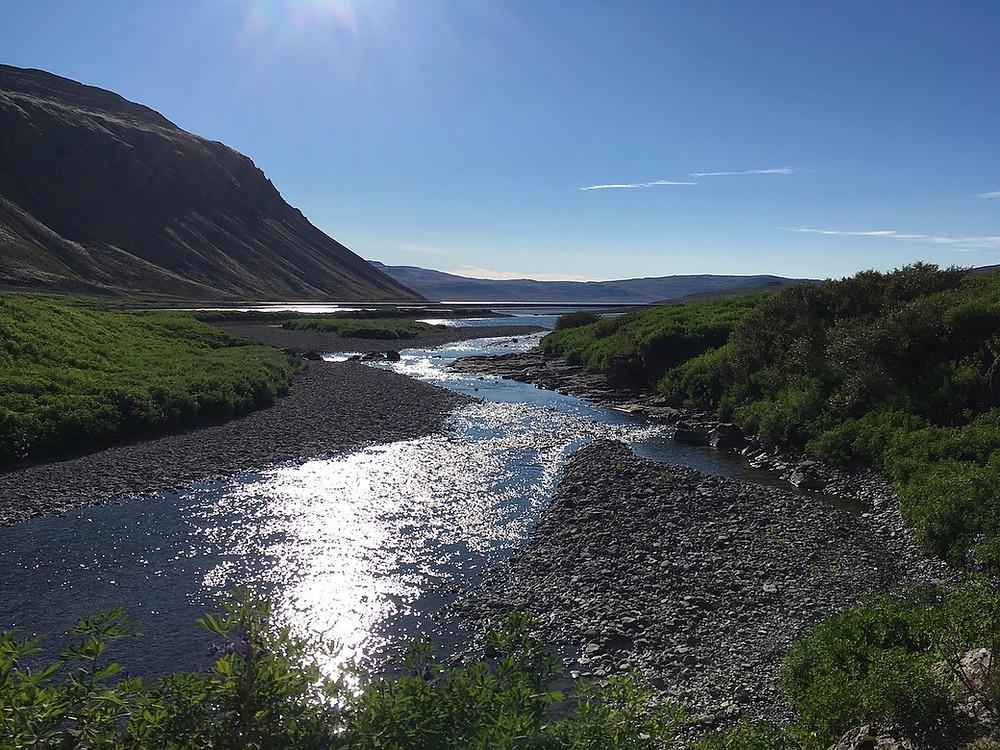 Eiríkur Örn Norðdahl, pistill, friðlandslaxar, hið freka auðmagn, laxeldi, fiskeldi, landsbyggðin, náttúra, friðland, Vestfirðir, úr vör, vefrit, Aron Ingi Guðmundsson
