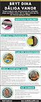 vanor-Infographic2019-2.png