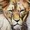 Thumbnail: Kin of Leo's by DigsArt