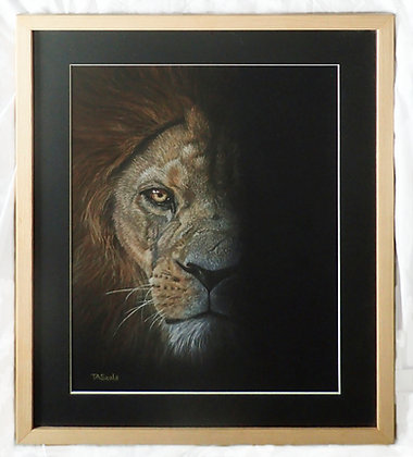 Adras- Barbary Lion by T Seals Art