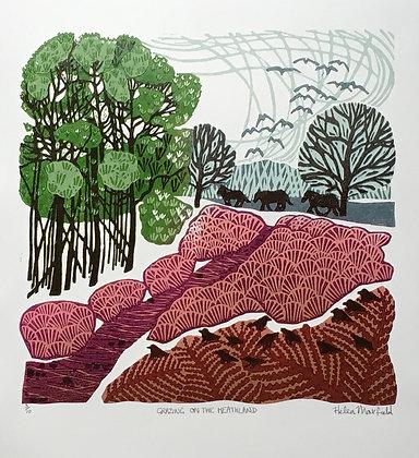 Grazing the Heathland by Helen Maxfield