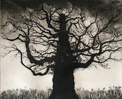 Blasted Oak by Tricia Newell