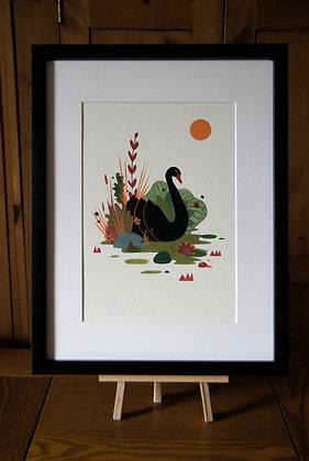 Black Swan by Catalina Carvajal