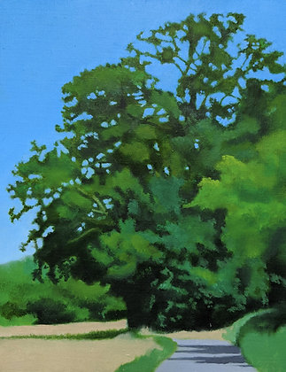 Oak Tree by David Stone