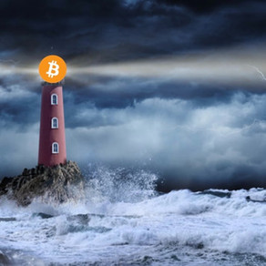 Bitcoin's Perfect Socio-Economic Storm