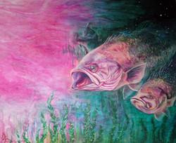 Pink bass