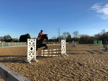 Team Showjumping Event at Parwood on Saturday