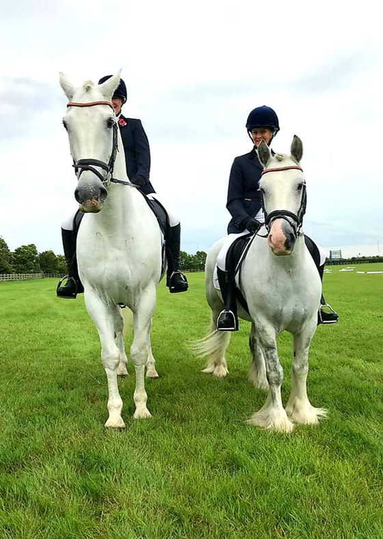 BRC National Championships at Lincoln Showground