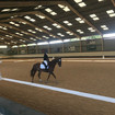 Area 6 Intermediate Dressage Qualifiers at Wellington Riding Centre