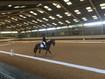 Area 6 Intermediate Dressage Qualifiers at Wellington Riding Centre