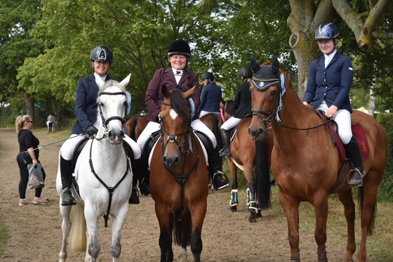 BRC Team Jumping Championship at the RIHS at Hickstead