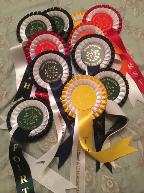 Area 6 Showjumping Qualifier at BCA