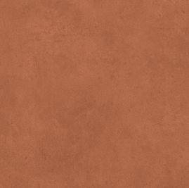 Burnt Ochre Colour Sample