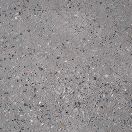 Exposed Aggregate Concrete Sample