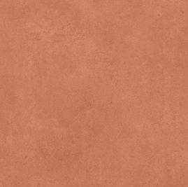 Salmon Colour Sample