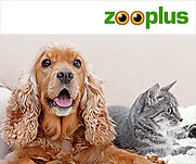 300x250_zooplus_nl.jpg