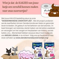 Kakjes voor Katjes: Bestel kattenzand en steun onze opvang