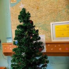 Help jij onze kerstboom vullen voor onze zwervertjes?