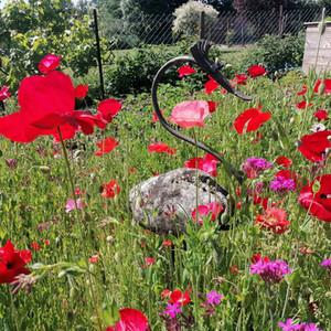 Garten Freienwohnung Dreiländerheck Habscheid Eifel Landschaft (1).jpg