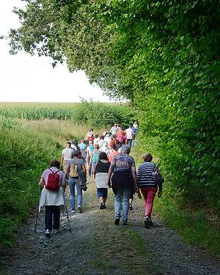 k-Wanderwege 2.JPG