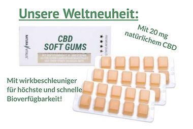 physioZone Niederprüm Eifel  Physiotherapie Prüm
