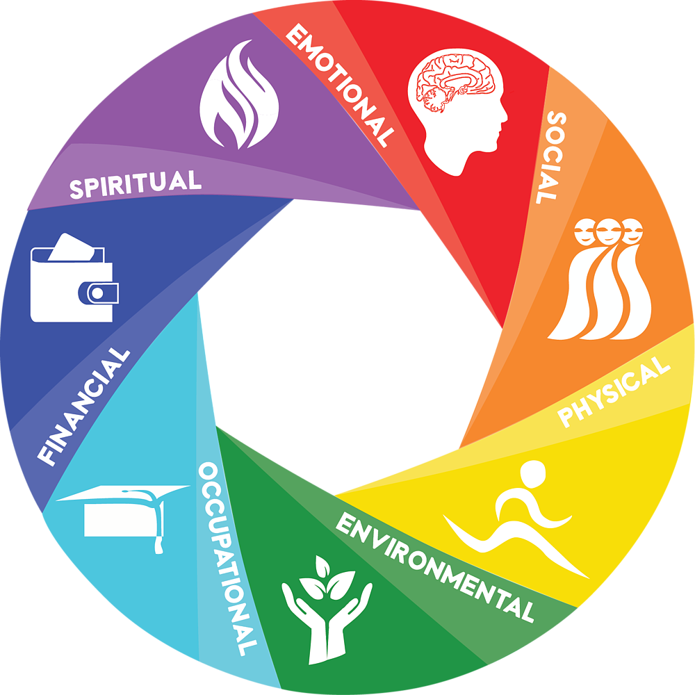 9 dimensions of wellness
