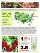 Newsletter image 2020-04.png
