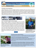 Newsletter image 2017-06.png