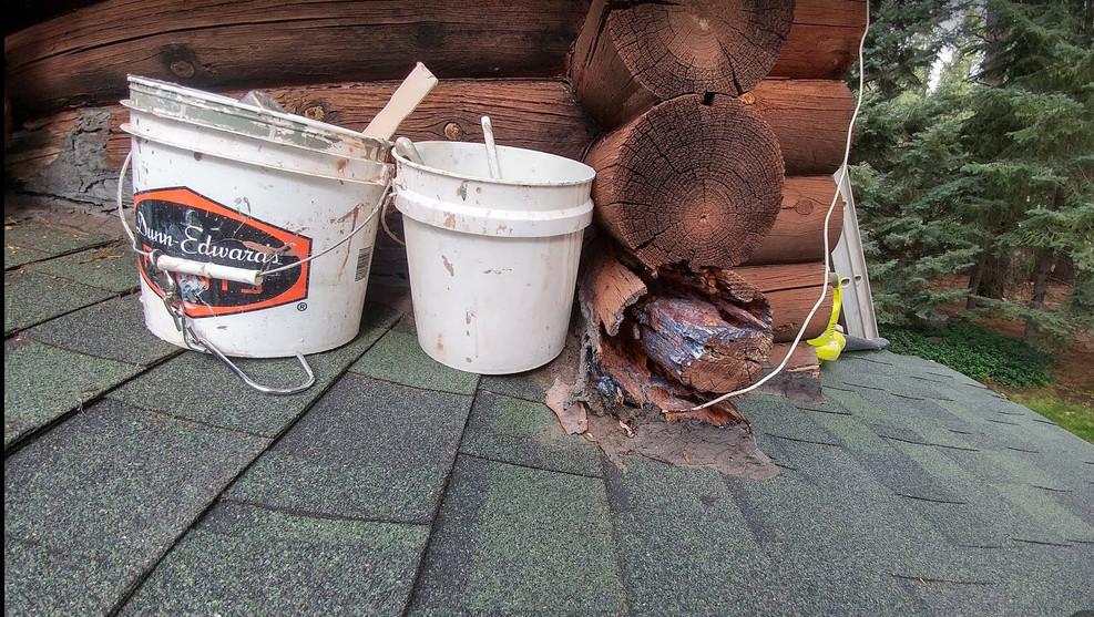 wood repair 3.jpg