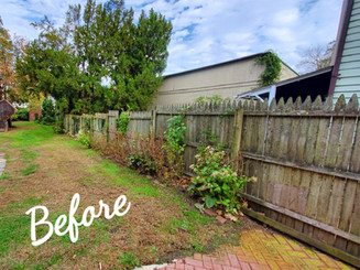 Before Fence Refresh