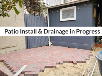 Patio Install and Drainage Solution in Progress