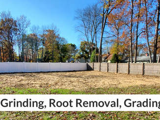 After Stump Grinding, Root Removal, Grading & Leveling