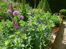 1/2 Acre Family Garden