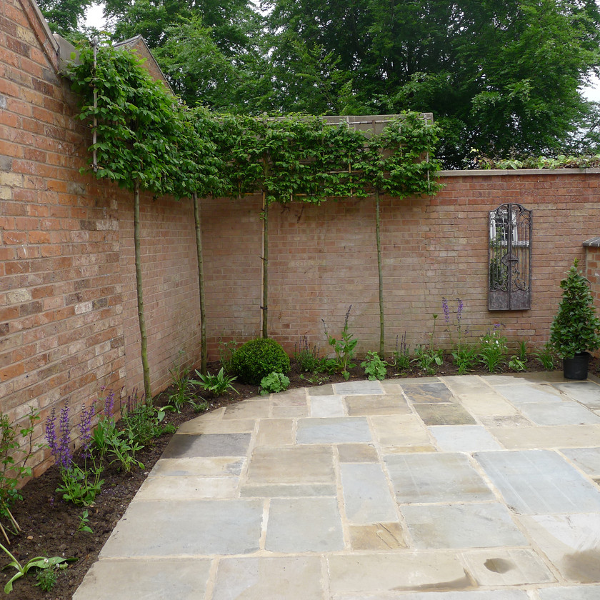Rear Courtyard Garden