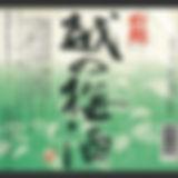 新潟_111白龍酒造 白龍 越の梅酒.jpg
