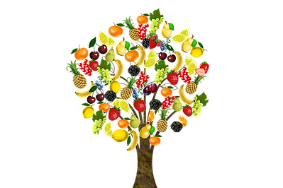 tree of fruits