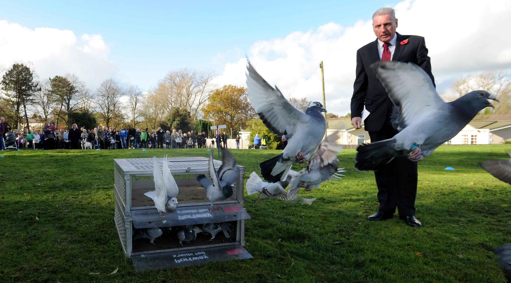 Vernon Coaker releases pigeons.jpg