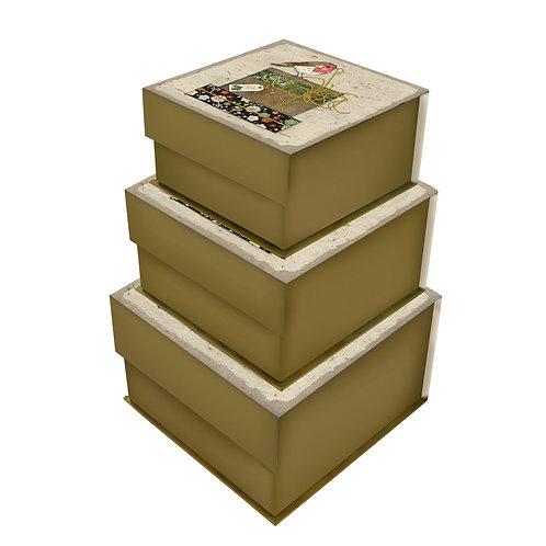 BUG ART ROBIN SET OF 3 SQ TAB BOXES, Min Qty: 1