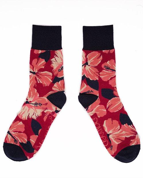 Hibiscus - Fuchsia