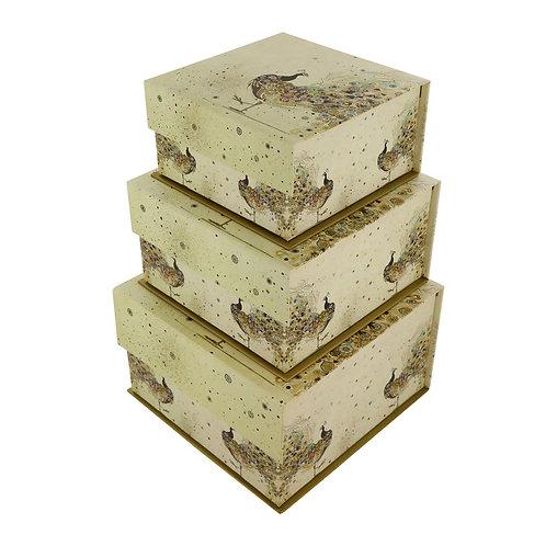 BUG ART PEACOCK SET OF 3 SQ TAB BOXES, Min Qty: 1