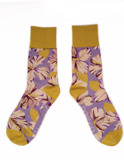 Hibiscus - Lilac