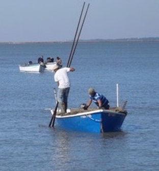 oysterfishery.jpg