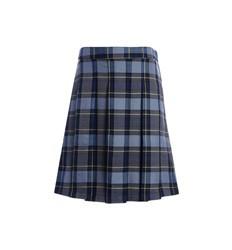Plaid skirt or skort
