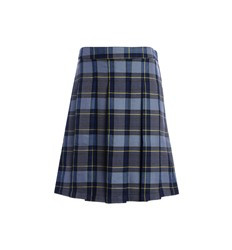 Plaid skirt/skort