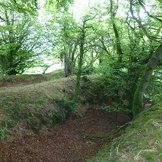 Rath Raithleann, the birthplace of the O Mahony Clan.JPG