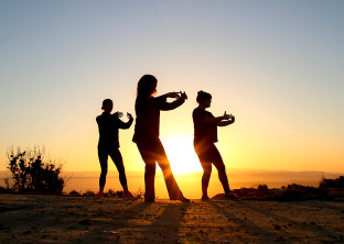 Tai Chi for Health and Wellness