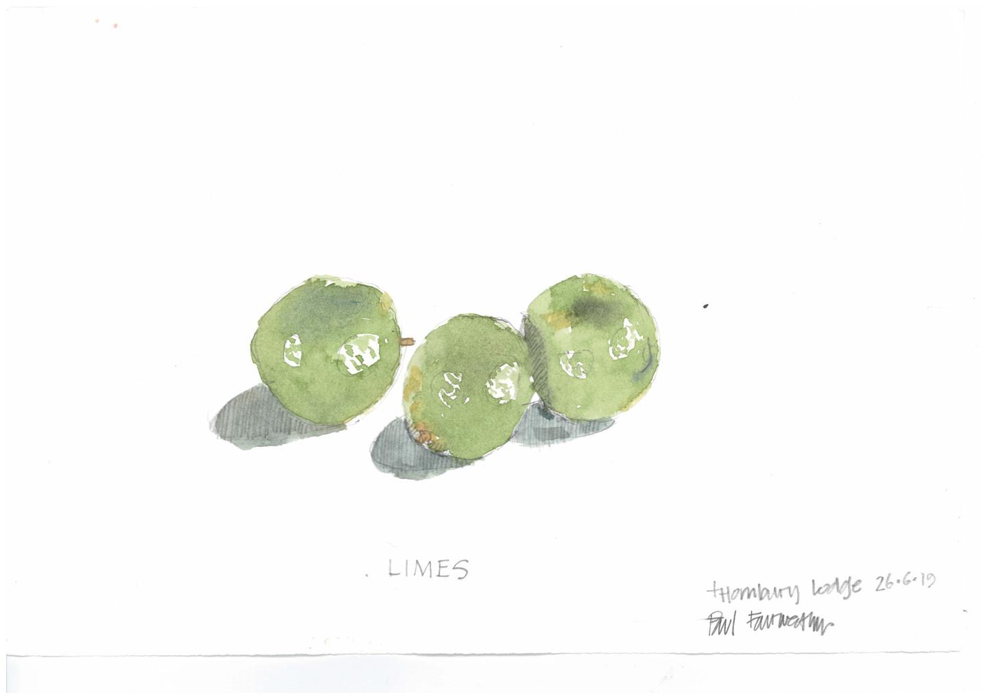Limes - 26 June 2019