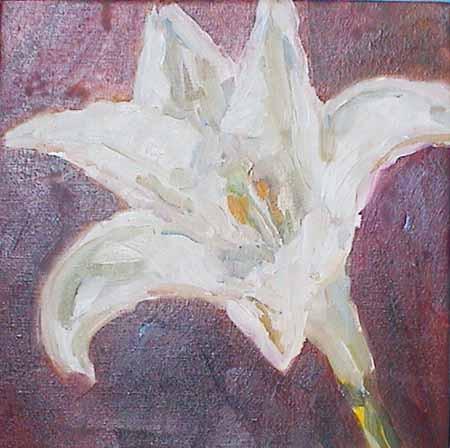 Lilliii